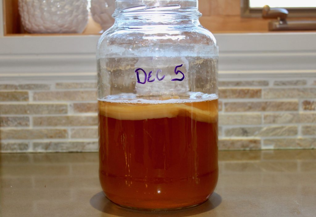 scoby-in-sweet-tea
