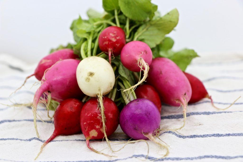 Beautiful locally-grown radishes