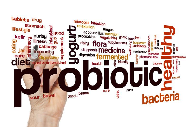 probiotic fermented food